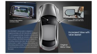 Roadwire blindspot detector